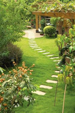 Garden Landscaper, Aylesbury