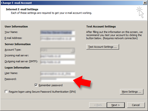 type in your new password into the 'password' box on the 'change email account' page